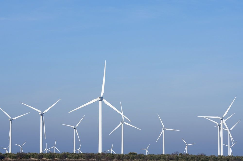 Investors terminate renewable energy projects following