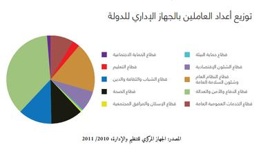 من تقرير المبادرة المصرية للحقوق الشخصية حول قانون الخدمة المدنية الجديد
