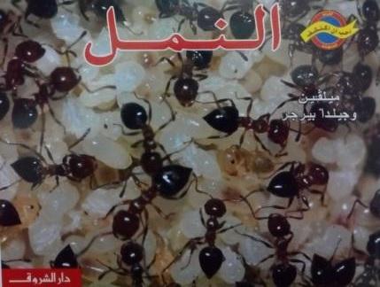 كتاب النمل