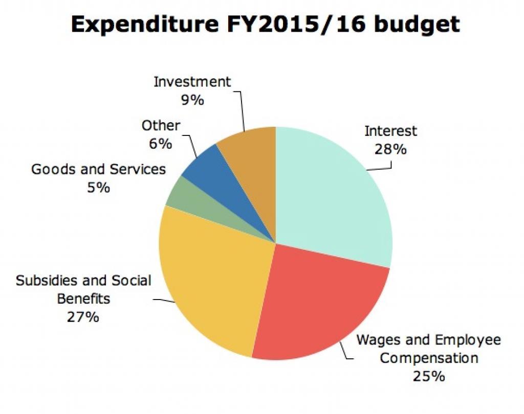 A Visual Guide To The 201617 Budget Madamasr