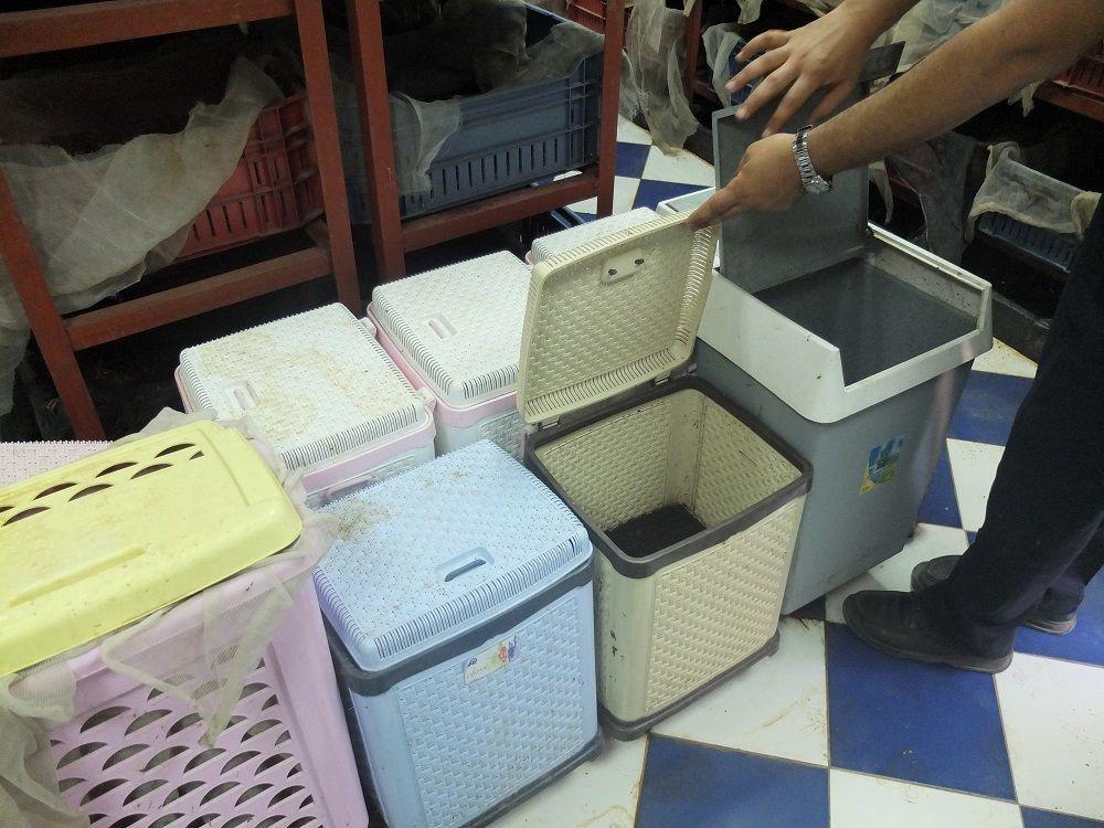 Vermicompost bins at CLAC